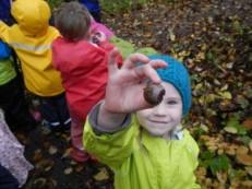 Preschool-acorn-300x225